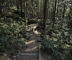 A bridge crosses a creek along the Baden Powell Trail on the way to Quarry Rock