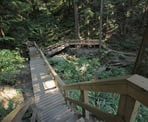 A wooden stairway along the Baden Powell Trail near Deep Cove, heading to Quarry Rock