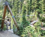 A suspension bridge crossing along the trail to Rainbow lake in Whistler, BC