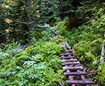 Wooden walkways over the muddy section at the beginning of the trail to Rohr Lake