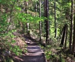 The trail around Sasamat Lake near Belcarra