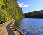 The raised boardwalks at Sasamat Lake are part of the trail that loops around the lake