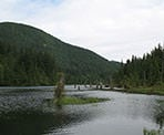 The view of the edge of Buntzen Lake when crossing the floating bridge
