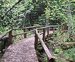 A wooden bridge crossing along the trail around Shadow Lake