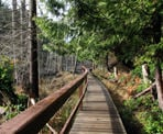 A wooden bridge that passes a bog area on the way to Smuggler Cove