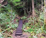 The start of the stairs along the Green Trail to the top of Soames Hill