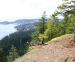 A view near the top of Soames Hill looking towards Gibsons