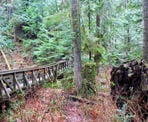 A wooden bridge along the Reservoir Trail near Steelhead Falls