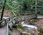The bridge across the creek that leads to Steelhead Falls