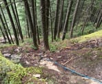 A rope is used to help hikers up the steep Halvor Lunden Trail. This rope is near the Swan Falls Viewpoint