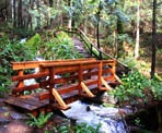 A small wooden bridge crosses Colvin Creek near the start of the trail to Triangle Lake