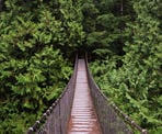 The Lynn Canyon Suspension Bridge in North Vancouver