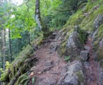 The hiking route is steep near the beginning of the Whippoorwill Point Trail