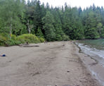Sandy Cove is a secluded beach near Harrison Lake along the Whippoorwill Point Trail