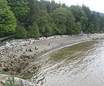 A view of the rocky beach area at Whytecliff Park