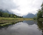 A cloudy day paddle along Widgeon Slough