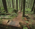 The hiking trail near Widgeon Falls