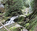 Woodland Falls in Pinecone Burke Provincial Park, Coquitlam