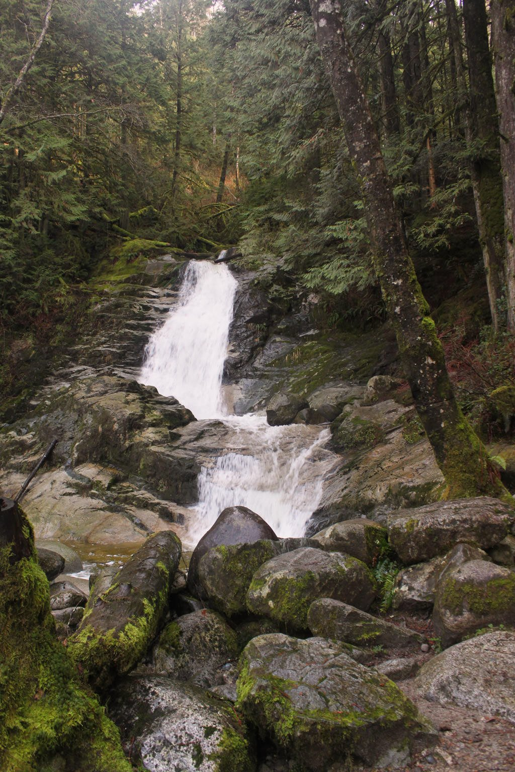Crystal falls in coquitlam bc vancouver trails for Crystal falls