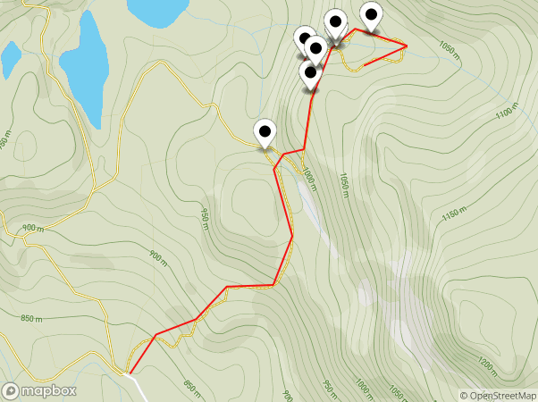 Ancient Cedars Trail Map