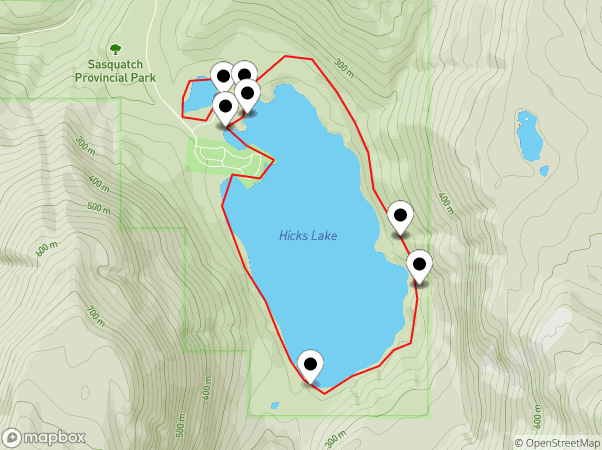 Hicks Lake Map